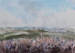 Watercolor: Meadow flowers
