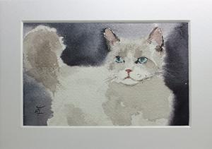 Watercolor: Cat