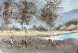 Watercolor: Landscape with birches